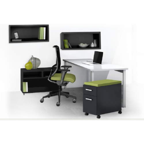The Perfect Mayline e5 Desking Typical 12 & 13