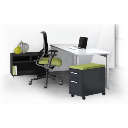 The Perfect Mayline e5 Desking Typical 2 & 3
